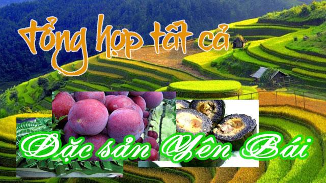 Tổng hợp tất cả đặc sản Yên Bái - VietFlavour.com