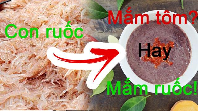 Mắm tôm được làm từ tôm hay tép - Trả lại đúng tên cho mắm tép, mắm tôm và mắm ruốc - VietFlavour