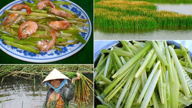 Năn bộp - Món ăn dân giã của người quê - VietFlavour.com